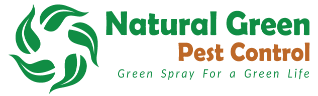 Natural Green Pest Control Thailand